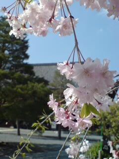 image/hemel-2007-04-15T14:39:58-3.jpg